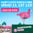 Paddy Power Bingo (EXCLUSIVE) (EXCLUSIVE) - Click here