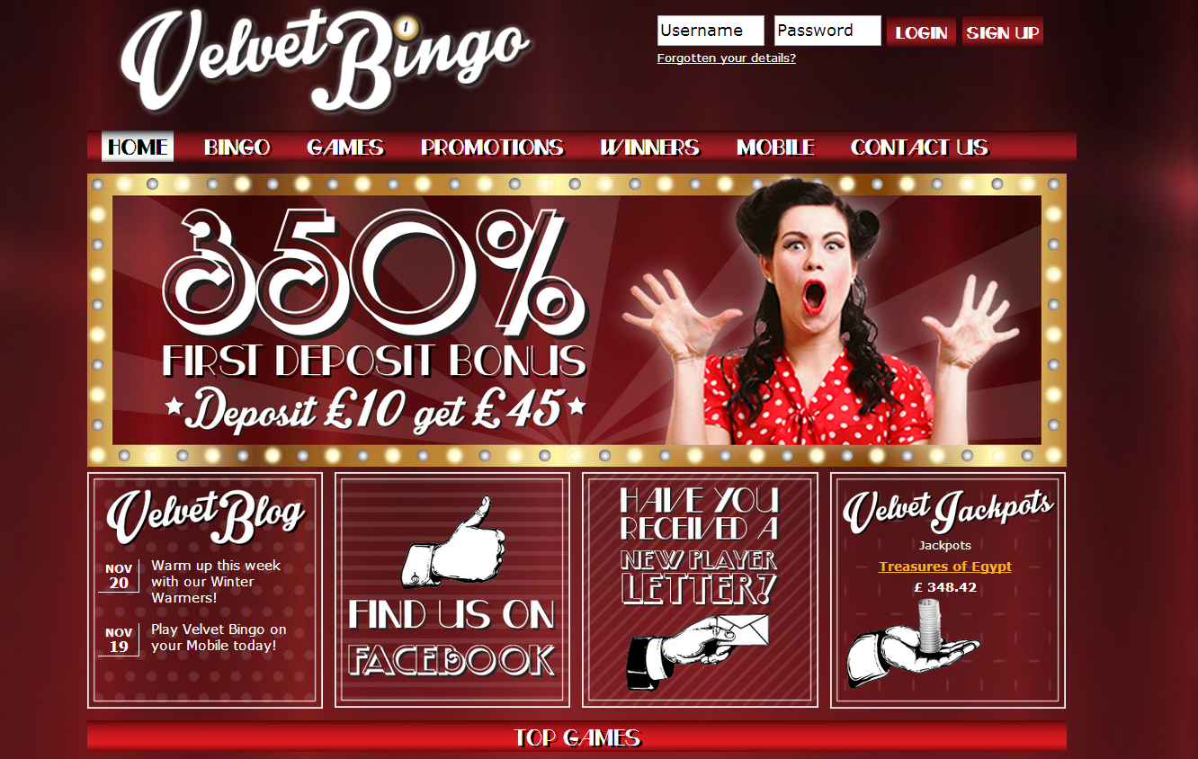Velvet Bingo review image
