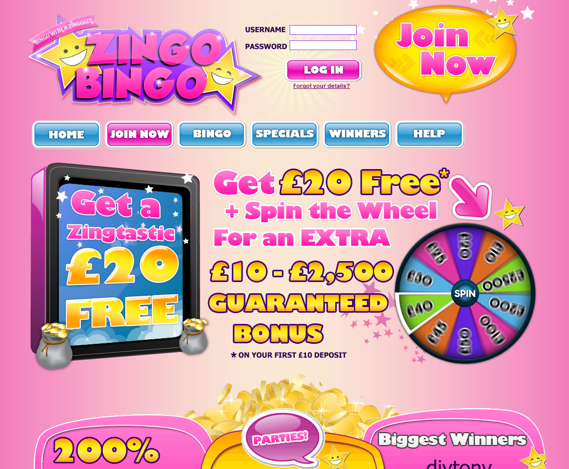 Zingo Bingo review image